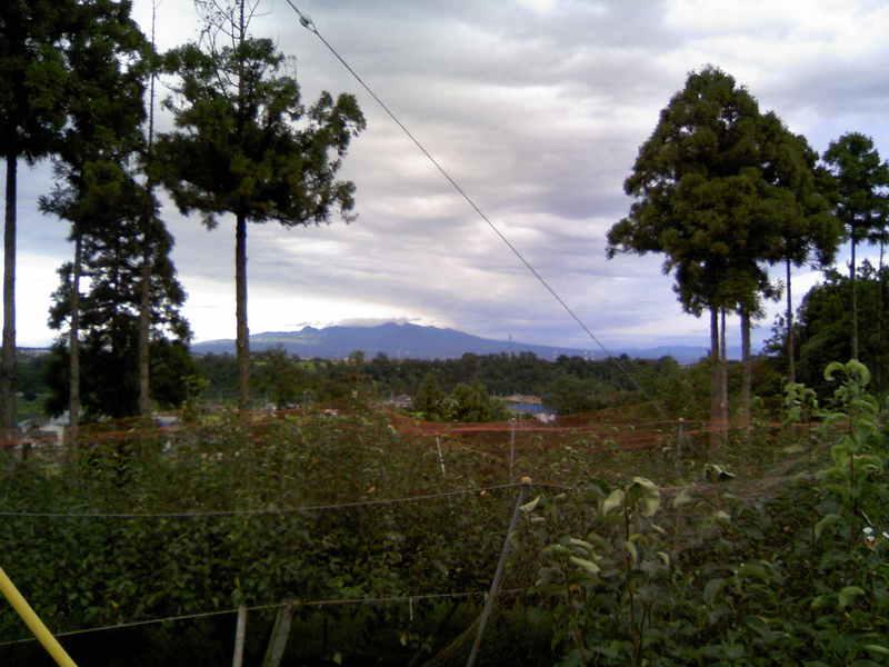 梨園から見た赤城山