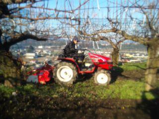 梨畑の耕運