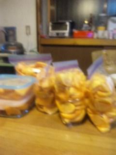 明日の柿の試食